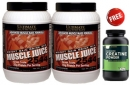 Muscle Juice 2544 5lbs 2 units FREE ON Creatine 150g