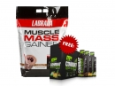 Labrada Muscle Mass Gainer 12lbs 5.4 Kg